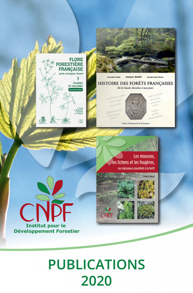 Catalogue 2020 des publications de l'IDF