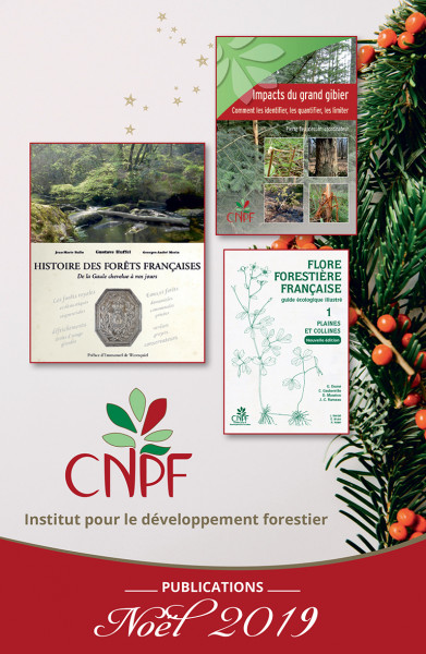 Catalogue Noël 2019 des publications de l'IDF