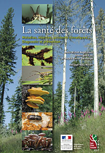 Couverture du livre La santé des forêts (33 Ko) : cliquer pour fermer