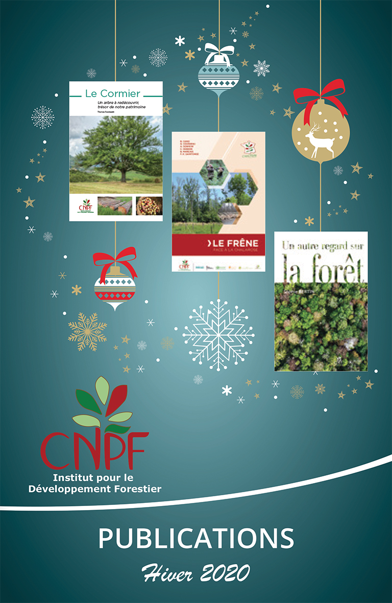 Catalogue de Noël 2020 des publications de l'IDF