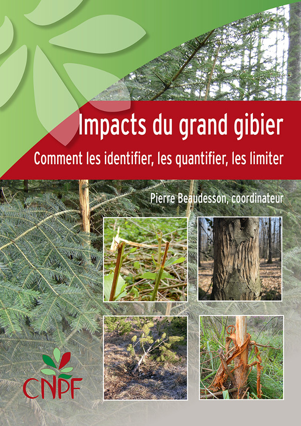Impacts du grand gibier