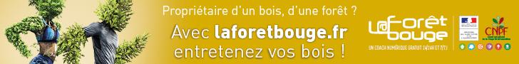 Avec laforetbouge.fr, entretenez vos bois !