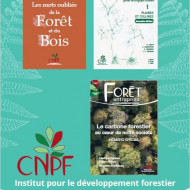 Catalogue 2019 des publications de l'IDF