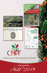 Catalogue Noël 2019 des publications de l'IDF (jpg - 796 Ko)