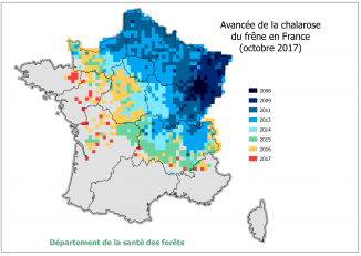 Avancée de la chalarose du frêne en France, situation octobre 2017 - Source : DSF